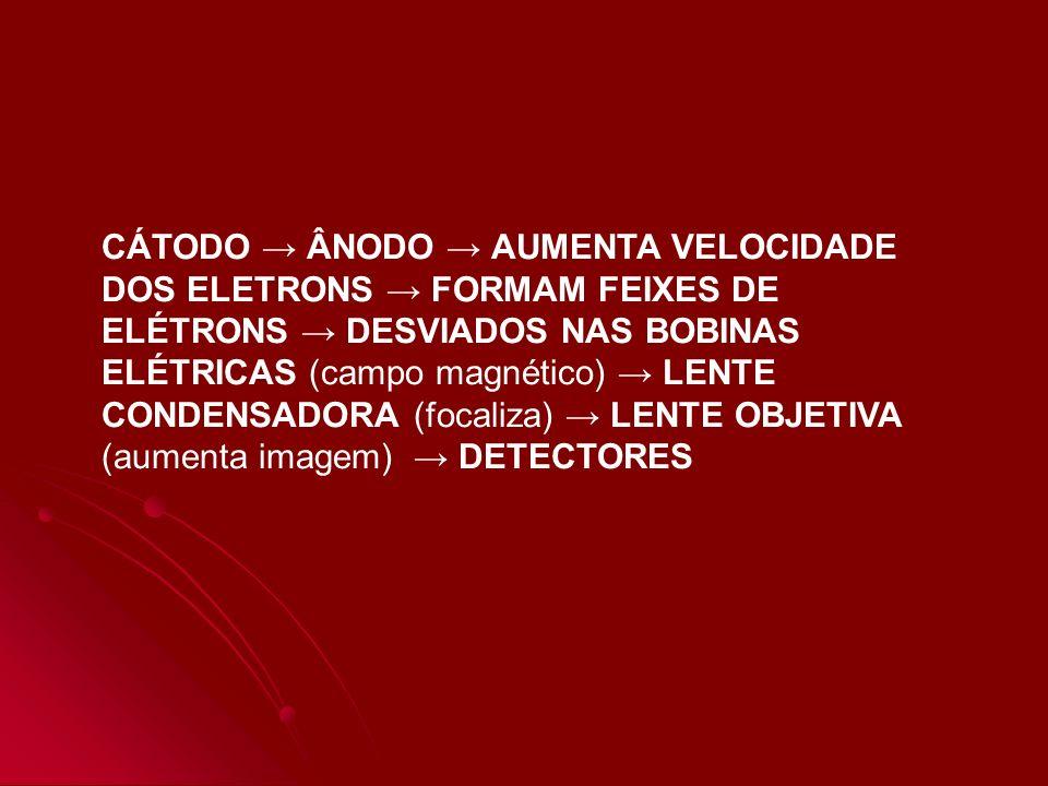 CÁTODO ÂNODO AUMENTA VELOCIDADE DOS ELETRONS FORMAM FEIXES DE ELÉTRONS DESVIADOS NAS BOBINAS ELÉTRICAS (campo magnético) LENTE CONDENSADORA (focaliza)