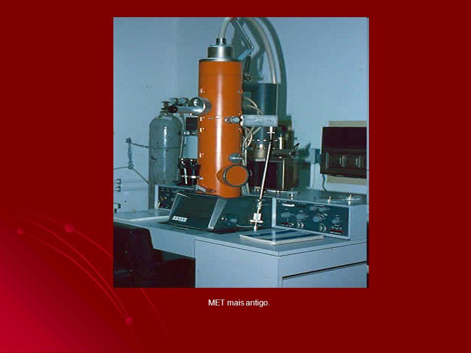 Hepatócito visto por Microscopia Eletrônica de Transmissão