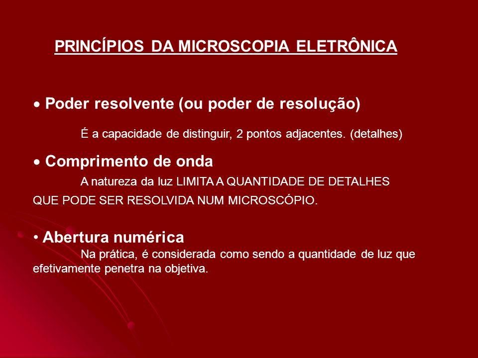 COMPONENTES DO MICROSCÓPIO ELETRÔNICO Propriedades ondulatórias dos elétrons Aumento no PODER RESOLVENTE Canhão eletrônico É a fonte de iluminação do microscópio eletrônico e consiste em um pequeno fragmento de fio em forma de V.
