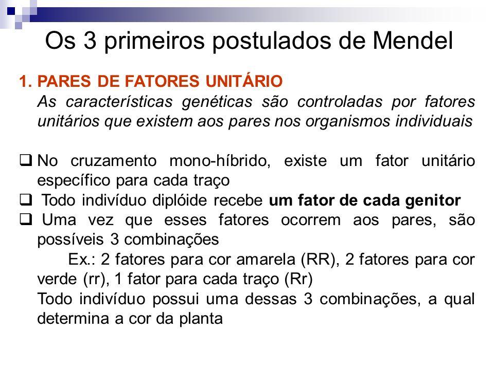 Os 3 primeiros postulados de Mendel 1.PARES DE FATORES UNITÁRIO As características genéticas são controladas por fatores unitários que existem aos par