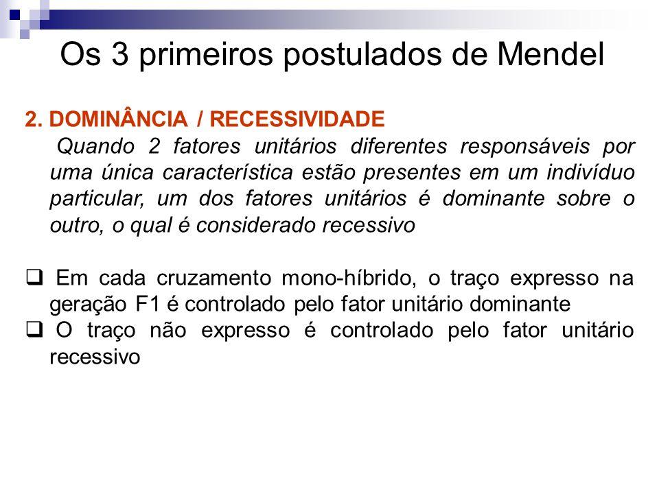 Os 3 primeiros postulados de Mendel 2. DOMINÂNCIA / RECESSIVIDADE Quando 2 fatores unitários diferentes responsáveis por uma única característica estã