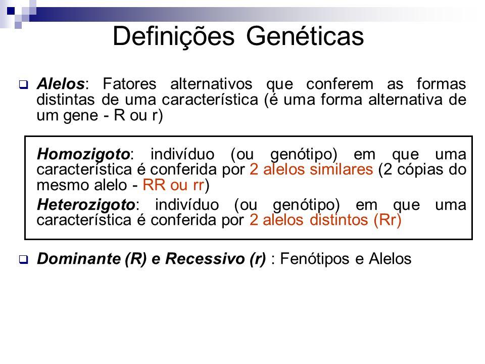Definições Genéticas Alelos: Fatores alternativos que conferem as formas distintas de uma característica (é uma forma alternativa de um gene - R ou r)