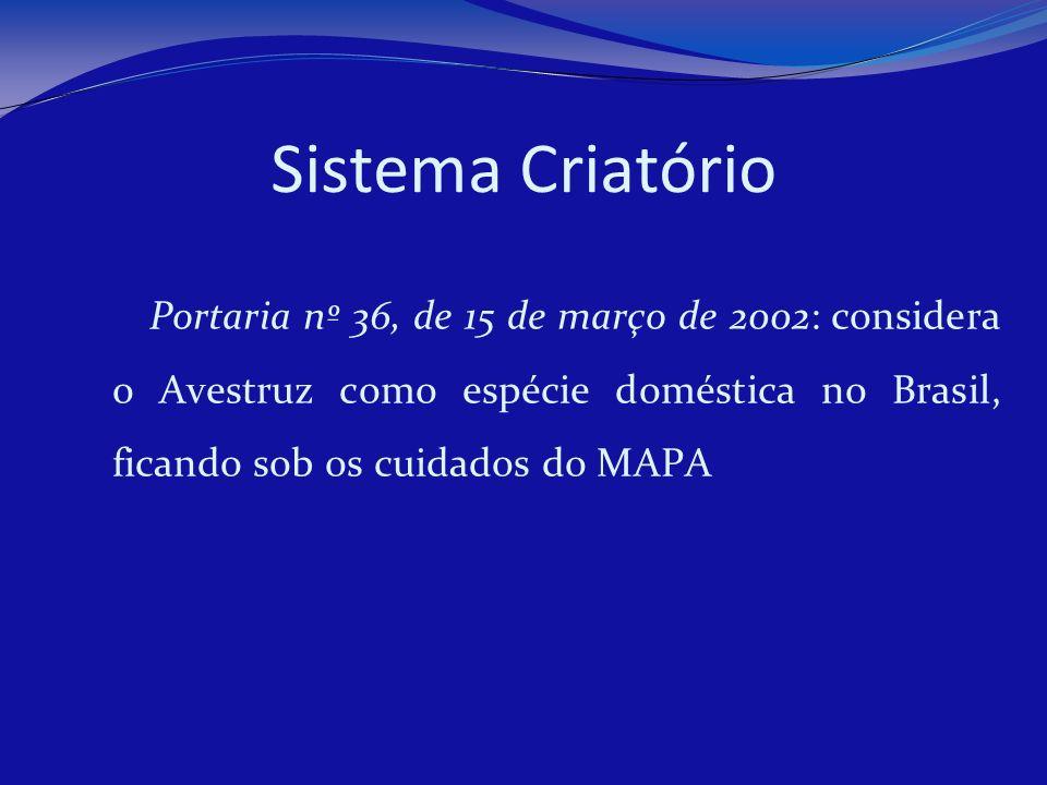 Sistema Criatório Portaria nº 36, de 15 de março de 2002: considera o Avestruz como espécie doméstica no Brasil, ficando sob os cuidados do MAPA