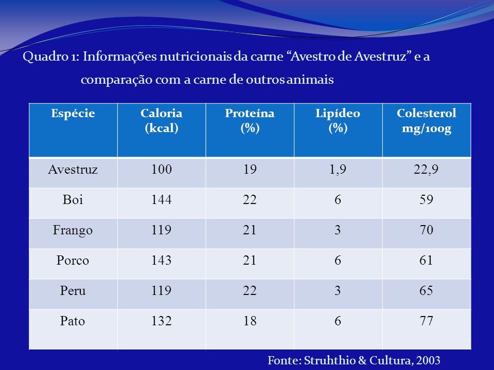 EspécieCaloria (kcal) Proteína (%) Lipídeo (%) Colesterol mg/100g Avestruz100191,922,9 Boi14422659 Frango11921370 Porco14321661 Peru11922365 Pato13218