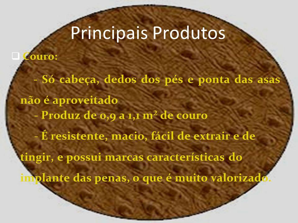 Principais Produtos Couro: - Só cabeça, dedos dos pés e ponta das asas não é aproveitado - Produz de 0,9 a 1,1 m² de couro - É resistente, macio, fáci