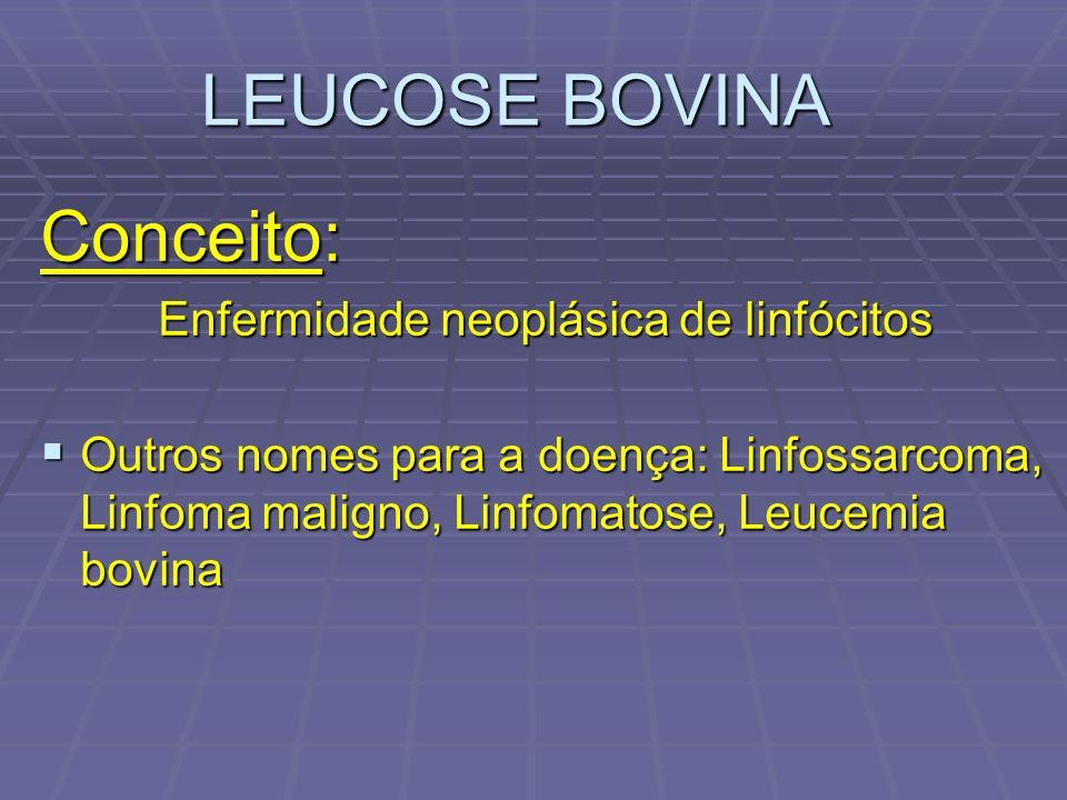 LEUCOSE BOVINA Conceito: Enfermidade neoplásica de linfócitos Enfermidade neoplásica de linfócitos Outros nomes para a doença: Linfossarcoma, Linfoma