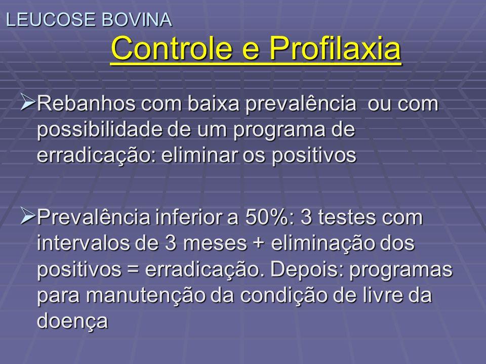 LEUCOSE BOVINA Controle e Profilaxia Rebanhos com baixa prevalência ou com possibilidade de um programa de erradicação: eliminar os positivos Rebanhos