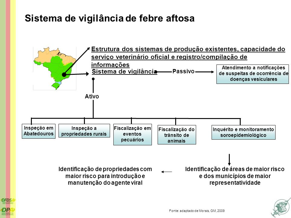 Sistema de vigilância de febre aftosa Identificação de áreas de maior risco e dos municípios de maior representatividade Sistema de vigilância Estrutu