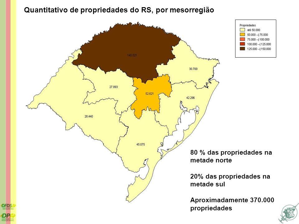 Quantitativo de propriedades do RS, por mesorregião 80 % das propriedades na metade norte 20% das propriedades na metade sul Aproximadamente 370.000 p
