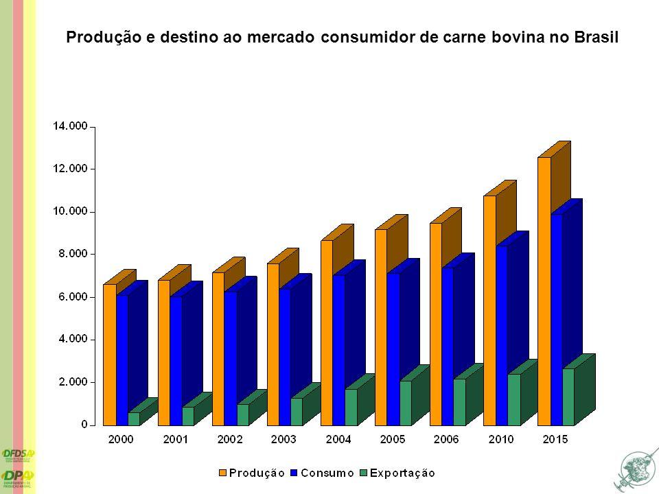 Produção e destino ao mercado consumidor de carne bovina no Brasil