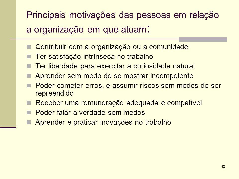 12 Principais motivações das pessoas em relação a organização em que atuam : Contribuir com a organização ou a comunidade Ter satisfação intrínseca no