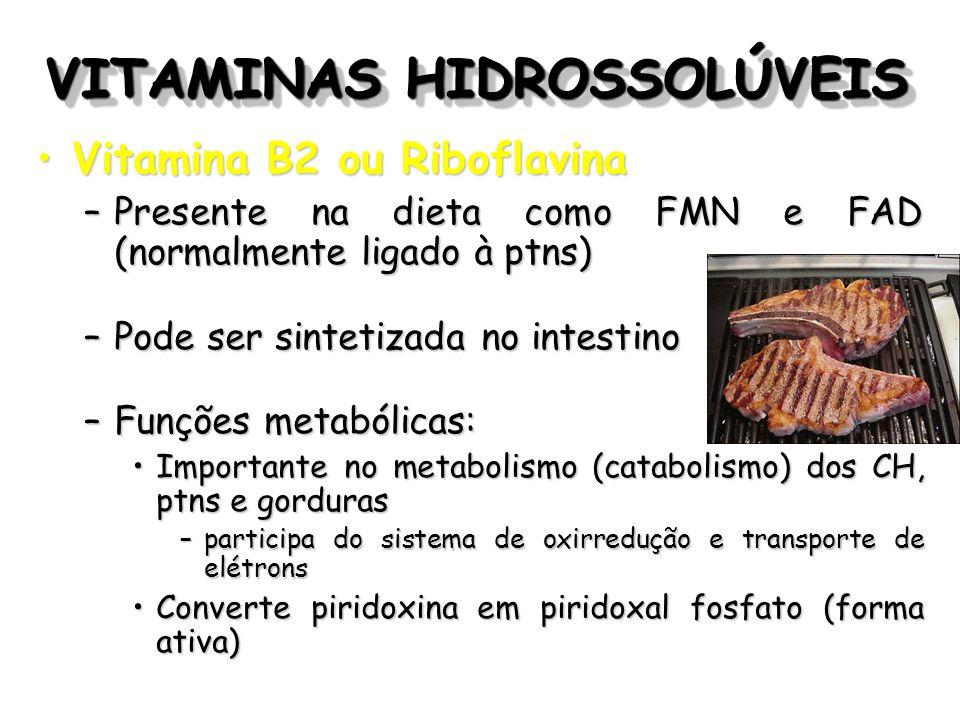 VITAMINAS HIDROSSOLÚVEIS Vitamina B2 ou RiboflavinaVitamina B2 ou Riboflavina –Presente na dieta como FMN e FAD (normalmente ligado à ptns) –Pode ser