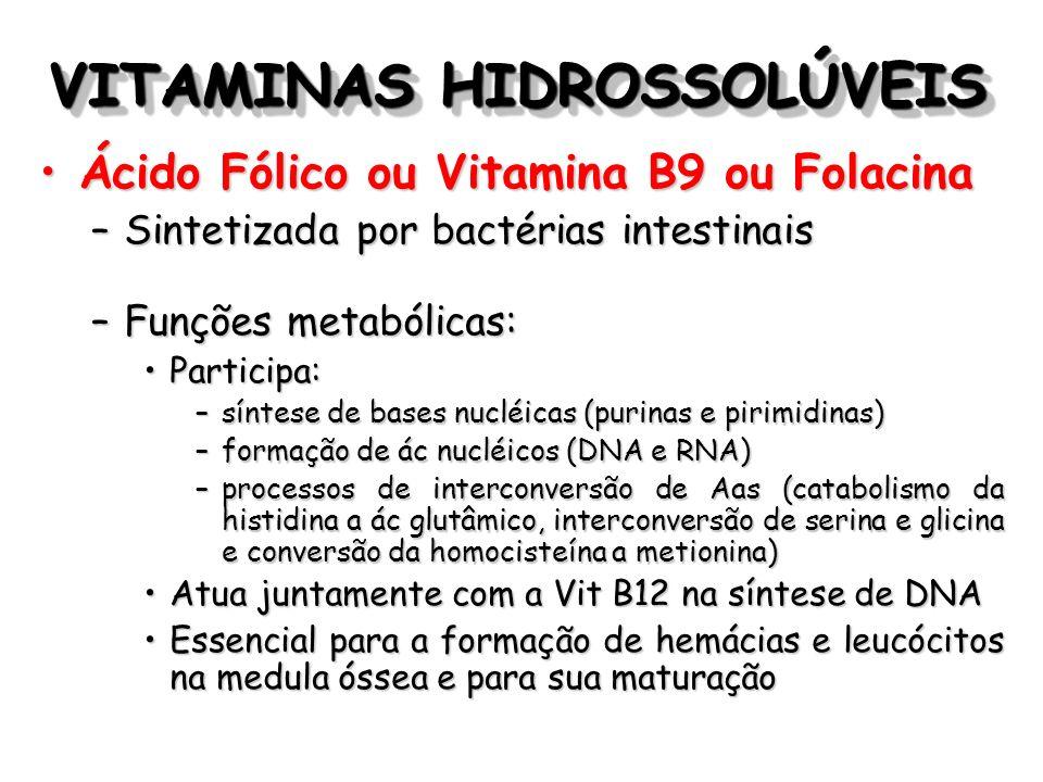 VITAMINAS HIDROSSOLÚVEIS Ácido Fólico ou Vitamina B9 ou FolacinaÁcido Fólico ou Vitamina B9 ou Folacina –Sintetizada por bactérias intestinais –Funçõe