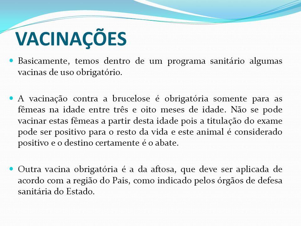 VACINAÇÕES Basicamente, temos dentro de um programa sanitário algumas vacinas de uso obrigatório. A vacinação contra a brucelose é obrigatória somente