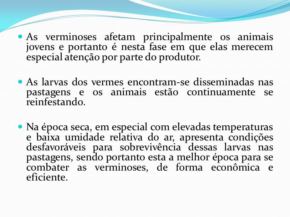 As verminoses afetam principalmente os animais jovens e portanto é nesta fase em que elas merecem especial atenção por parte do produtor. As larvas do