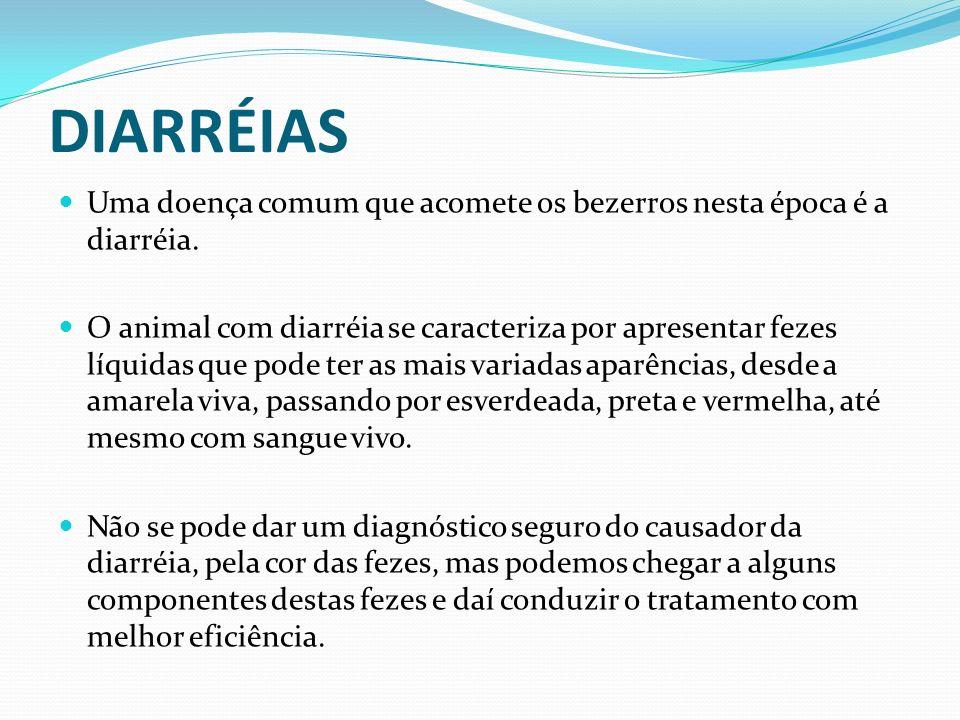 DIARRÉIAS Uma doença comum que acomete os bezerros nesta época é a diarréia. O animal com diarréia se caracteriza por apresentar fezes líquidas que po