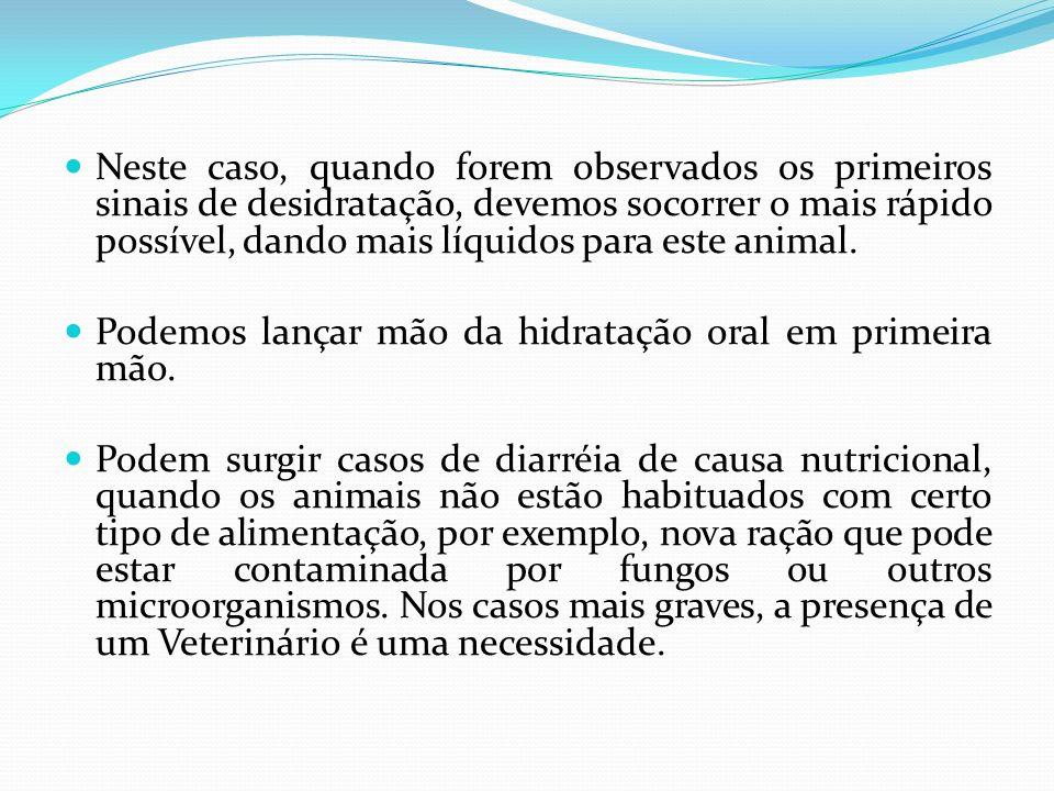 MICOSES Outra enfermidade comum nesta época é o aparecimento de micoses.