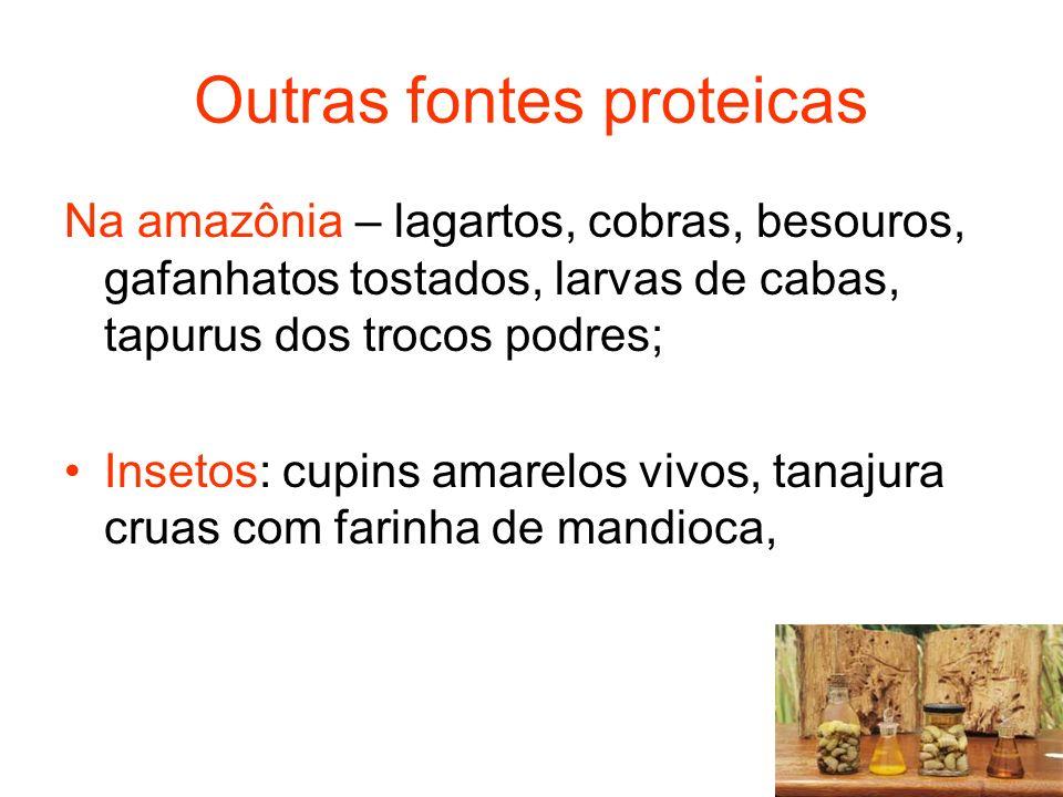 Outras fontes proteicas Na amazônia – lagartos, cobras, besouros, gafanhatos tostados, larvas de cabas, tapurus dos trocos podres; Insetos: cupins amarelos vivos, tanajura cruas com farinha de mandioca,