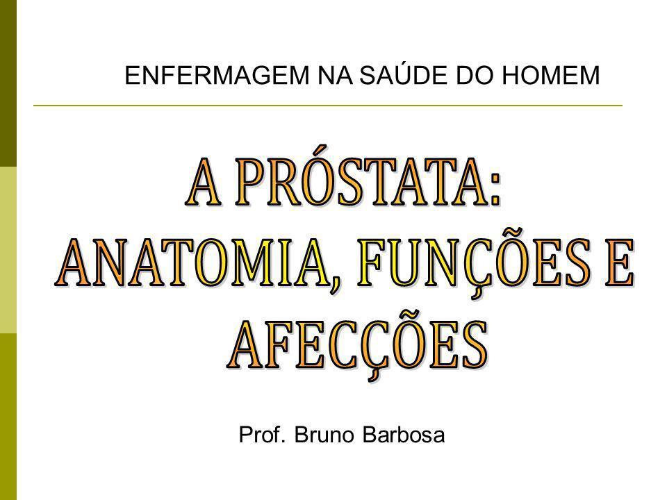 Prof. Bruno Barbosa ENFERMAGEM NA SAÚDE DO HOMEM