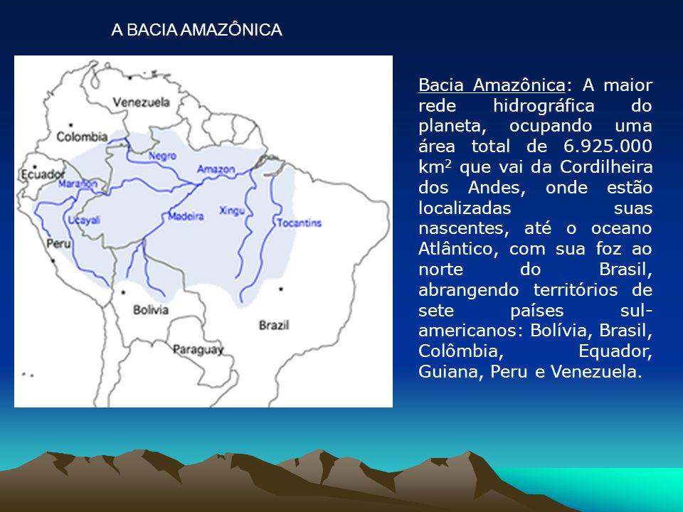 Bacia Amazônica: A maior rede hidrográfica do planeta, ocupando uma área total de 6.925.000 km 2 que vai da Cordilheira dos Andes, onde estão localiza