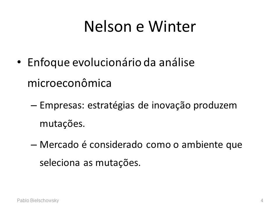 Nelson e Winter Enfoque evolucionário da análise microeconômica – Empresas: estratégias de inovação produzem mutações. – Mercado é considerado como o