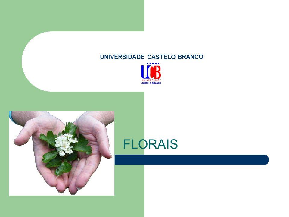 UNIVERSIDADE CASTELO BRANCO FLORAIS