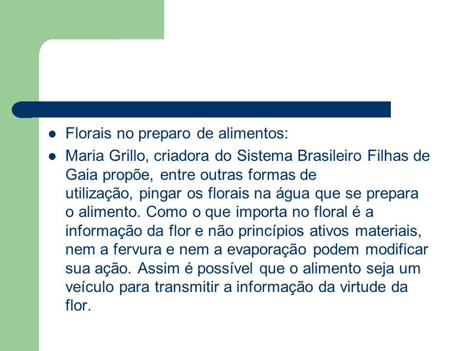 Florais no preparo de alimentos: Maria Grillo, criadora do Sistema Brasileiro Filhas de Gaia propõe, entre outras formas de utilização, pingar os flor