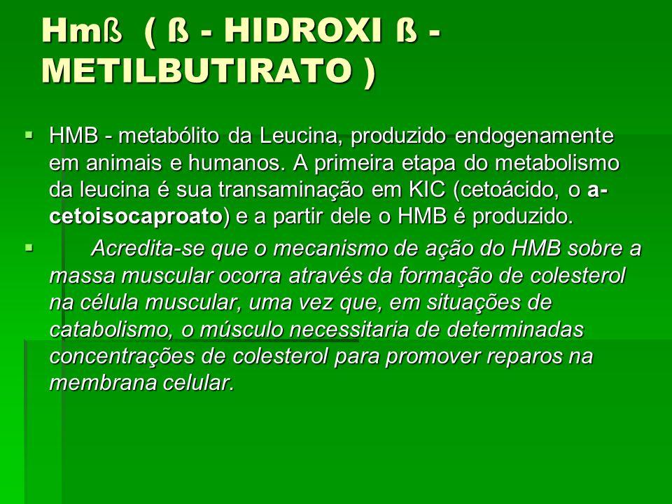 Hm ß ( ß - HIDROXI ß - METILBUTIRATO ) HMB - metabólito da Leucina, produzido endogenamente em animais e humanos. A primeira etapa do metabolismo da l