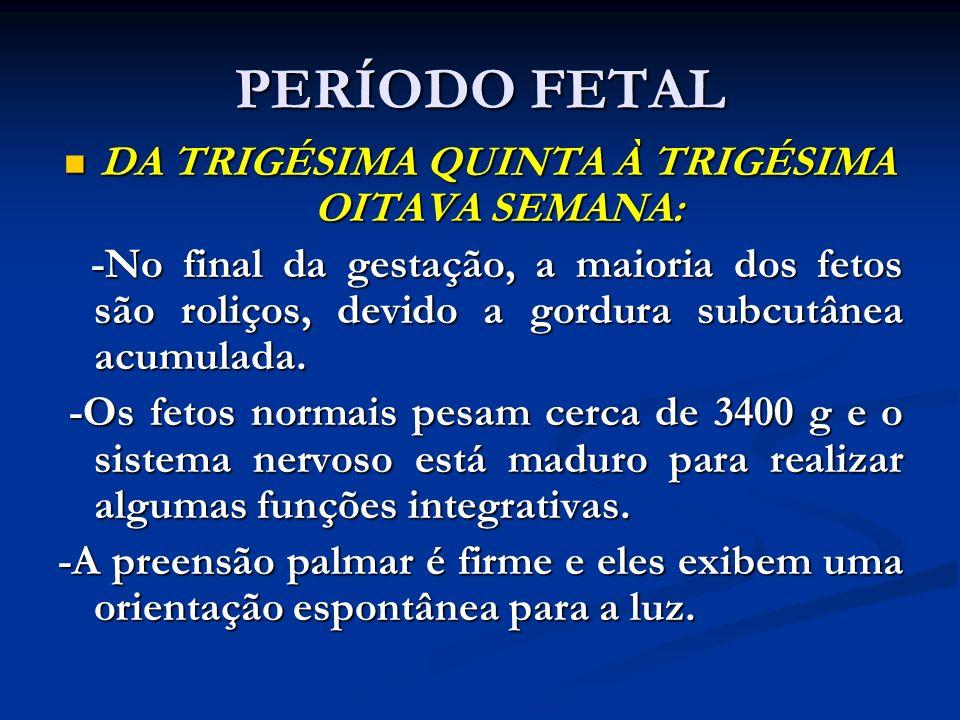 PERÍODO FETAL DA TRIGÉSIMA QUINTA À TRIGÉSIMA OITAVA SEMANA: DA TRIGÉSIMA QUINTA À TRIGÉSIMA OITAVA SEMANA: -No final da gestação, a maioria dos fetos