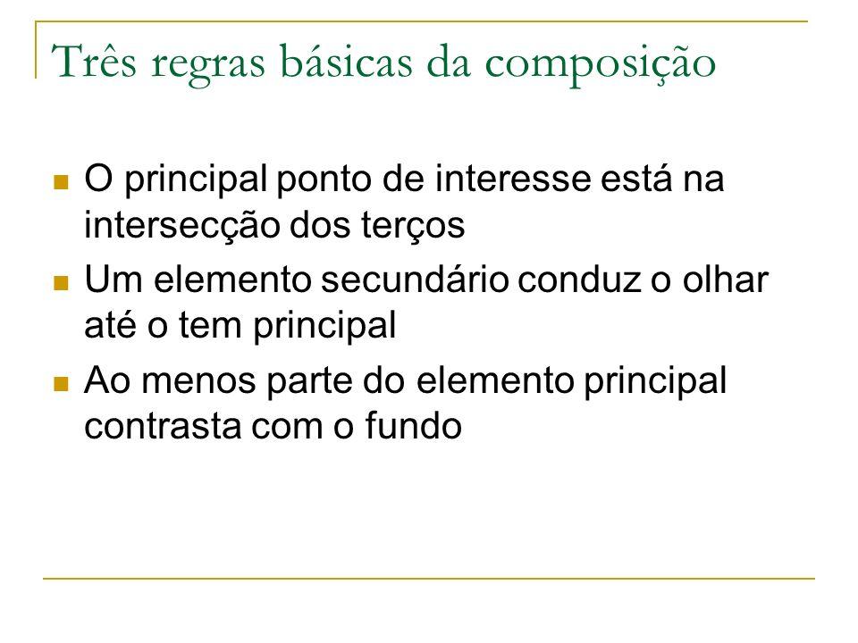 Três regras básicas da composição O principal ponto de interesse está na intersecção dos terços Um elemento secundário conduz o olhar até o tem princi
