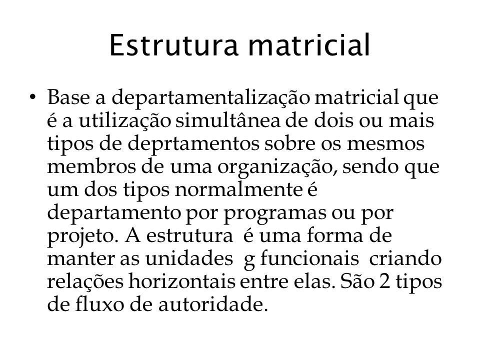 Estrutura matricial Base a departamentalização matricial que é a utilização simultânea de dois ou mais tipos de deprtamentos sobre os mesmos membros d