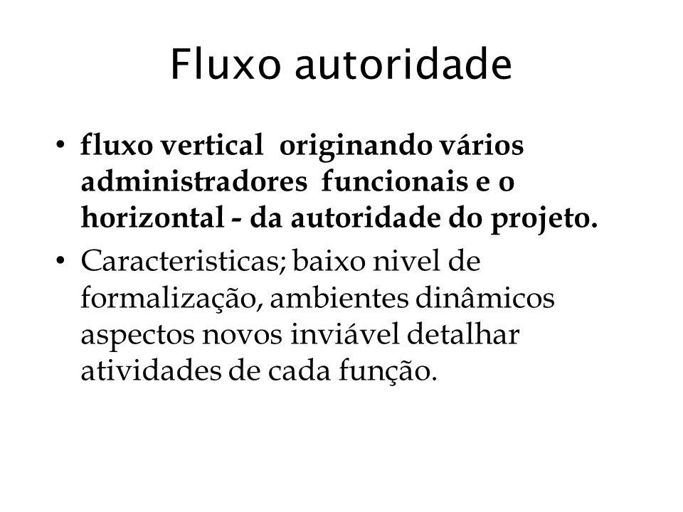 Fluxo autoridade fluxo vertical originando vários administradores funcionais e o horizontal - da autoridade do projeto. Caracteristicas; baixo nivel d