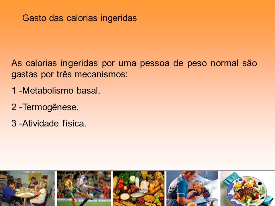 As calorias ingeridas por uma pessoa de peso normal são gastas por três mecanismos: 1 -Metabolismo basal. 2 -Termogênese. 3 -Atividade física. Gasto d