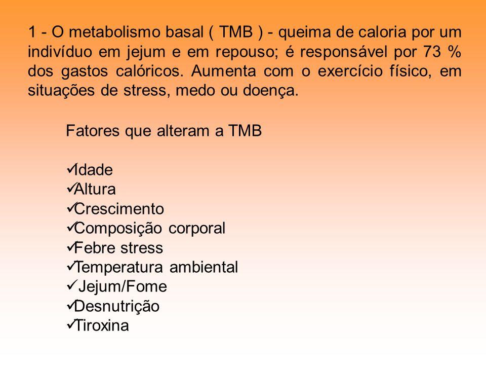 1 - O metabolismo basal ( TMB ) - queima de caloria por um indivíduo em jejum e em repouso; é responsável por 73 % dos gastos calóricos. Aumenta com o