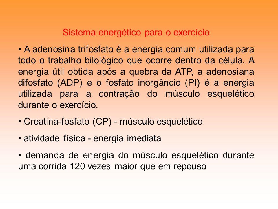 Sistema energético para o exercício A adenosina trifosfato é a energia comum utilizada para todo o trabalho bilológico que ocorre dentro da célula. A