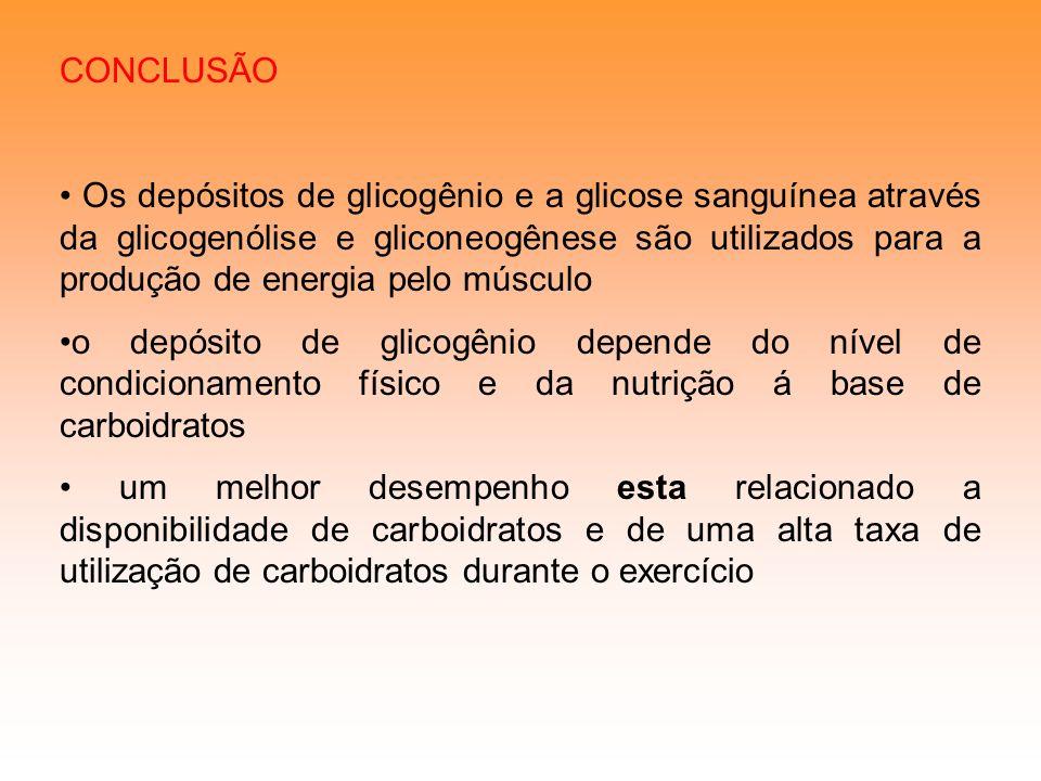 CONCLUSÃO Os depósitos de glicogênio e a glicose sanguínea através da glicogenólise e gliconeogênese são utilizados para a produção de energia pelo mú