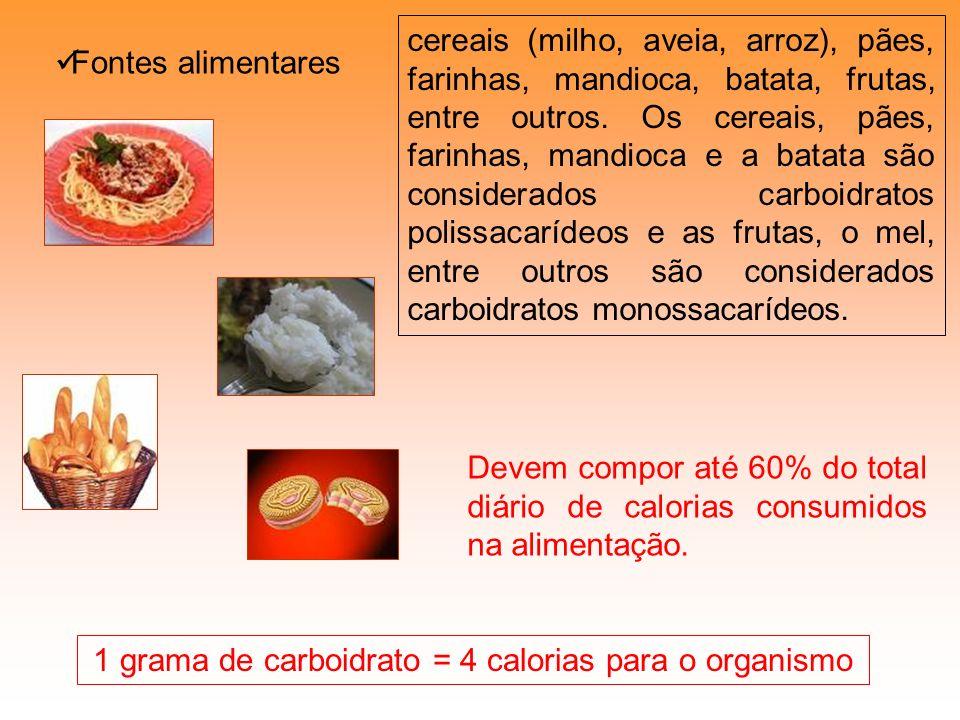 Fontes alimentares 1 grama de carboidrato = 4 calorias para o organismo cereais (milho, aveia, arroz), pães, farinhas, mandioca, batata, frutas, entre