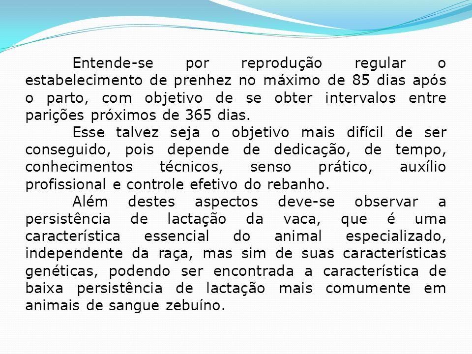 Entende-se por reprodução regular o estabelecimento de prenhez no máximo de 85 dias após o parto, com objetivo de se obter intervalos entre parições p