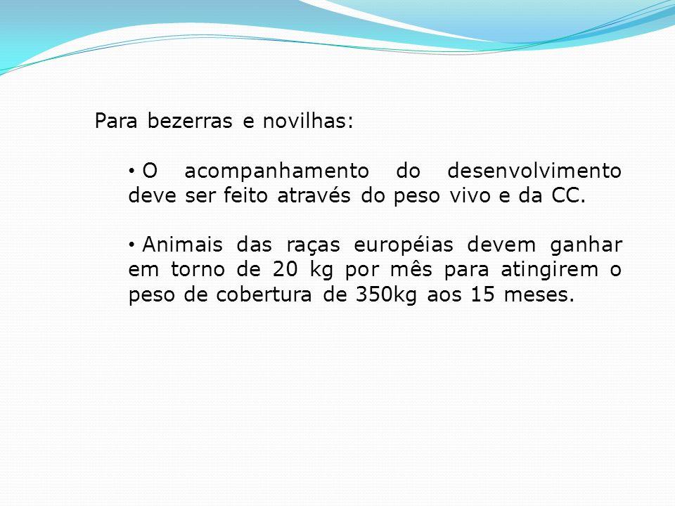 Para animais adultos, tem-se utilizado como índices: 1)produção média por vaca em lactação/dia; 2)produção média diária pelo total de vacas do rebanho; 3)produção de leite por hectare/ano; 4)taxa de natalidade; 5)Idade ao primeiro parto; 6)intervalo entre partos; 7)litros de leite por quilo de concentrado fornecido; e 8)mão-de-obra por litro de leite produzido