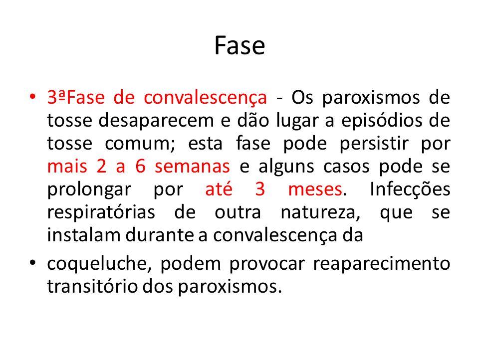Fase 3ªFase de convalescença - Os paroxismos de tosse desaparecem e dão lugar a episódios de tosse comum; esta fase pode persistir por mais 2 a 6 sema