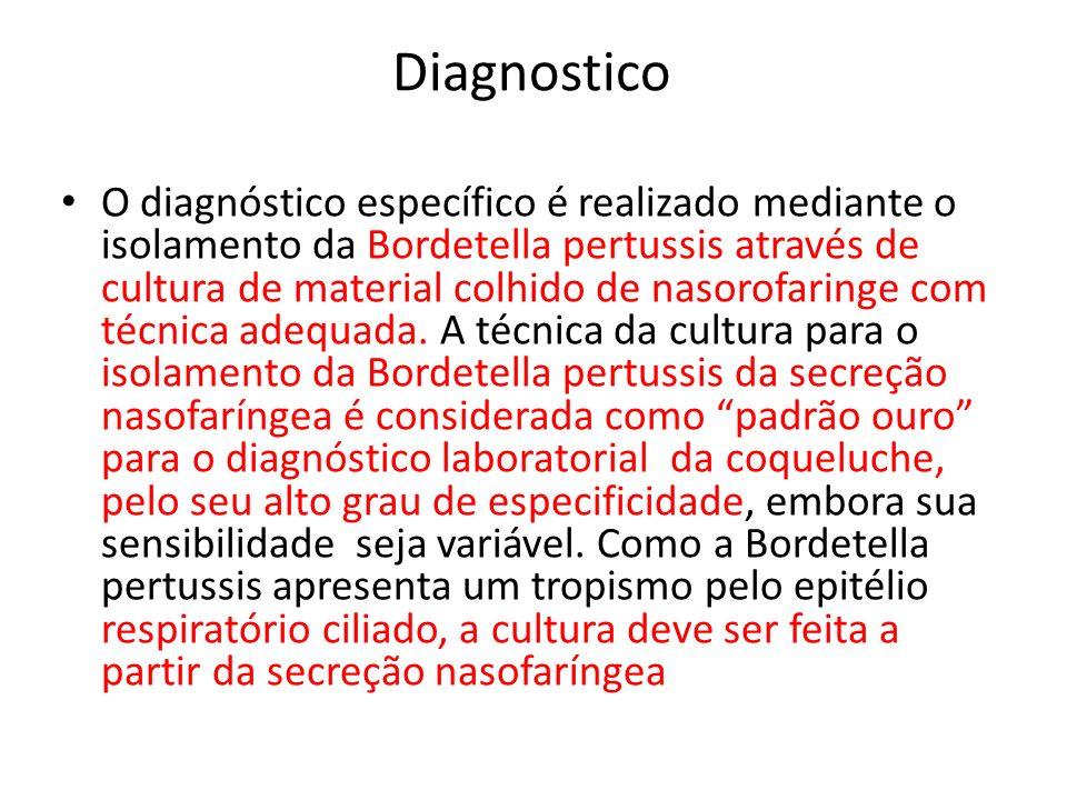 Diagnostico O diagnóstico específico é realizado mediante o isolamento da Bordetella pertussis através de cultura de material colhido de nasorofaringe