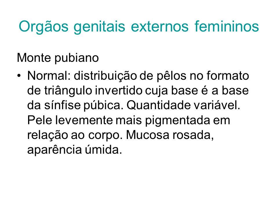 Orgãos genitais externos femininos Monte pubiano Normal: distribuição de pêlos no formato de triângulo invertido cuja base é a base da sínfise púbica.