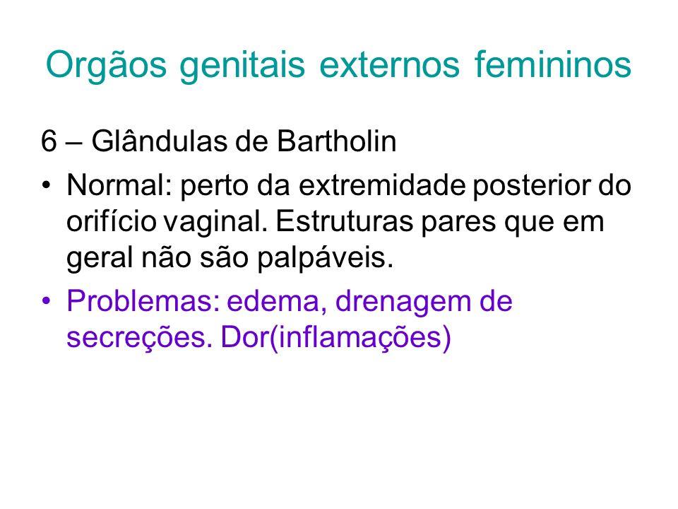Orgãos genitais externos femininos 6 – Glândulas de Bartholin Normal: perto da extremidade posterior do orifício vaginal. Estruturas pares que em gera