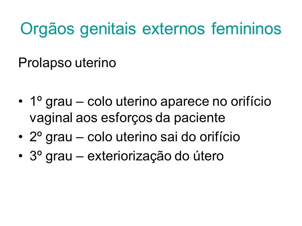 Orgãos genitais externos femininos Prolapso uterino 1º grau – colo uterino aparece no orifício vaginal aos esforços da paciente 2º grau – colo uterino