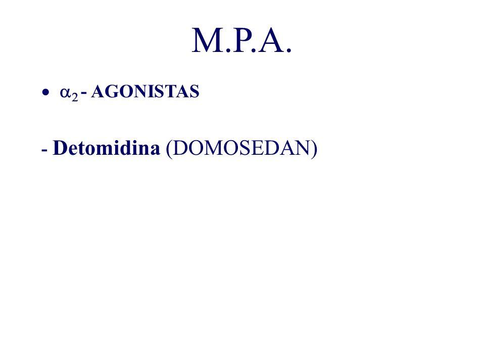 M.P.A. - AGONISTAS - Detomidina (DOMOSEDAN)