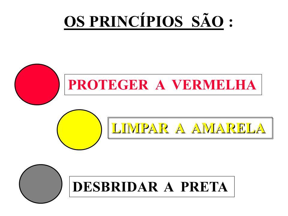 PROTEGER A VERMELHA LIMPAR A AMARELA DESBRIDAR A PRETA OS PRINCÍPIOS SÃO :