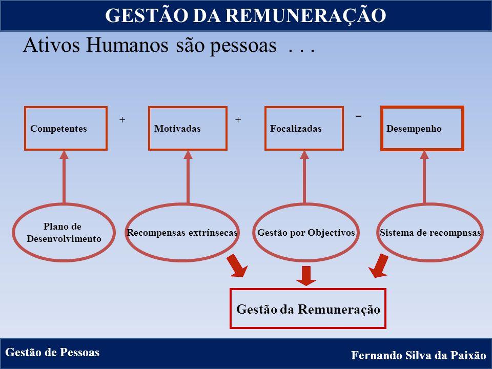 14 CompetentesMotivadasFocalizadas Desempenho ++ = Plano de Desenvolvimento Recompensas extrínsecasGestão por ObjectivosSistema de recompnsas Ativos H