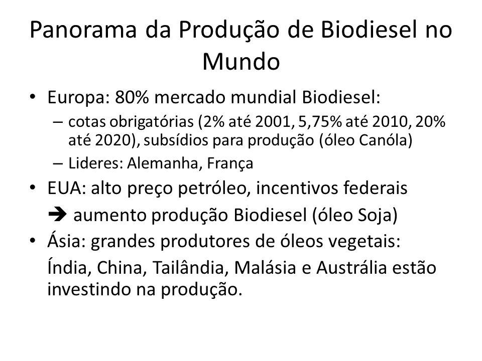 Panorama da Produção de Biodiesel no Mundo Europa: 80% mercado mundial Biodiesel: – cotas obrigatórias (2% até 2001, 5,75% até 2010, 20% até 2020), su