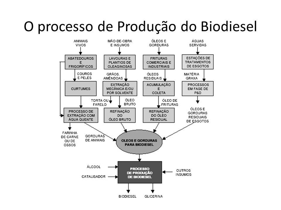 Biodiesel no Brasil Brasil: extensão territorial, clima e solo favorável alta potencialidade Biodiesel Inserção Internacional Limitada: restrições técnicas e proteção do mercado na Europa e EUA.