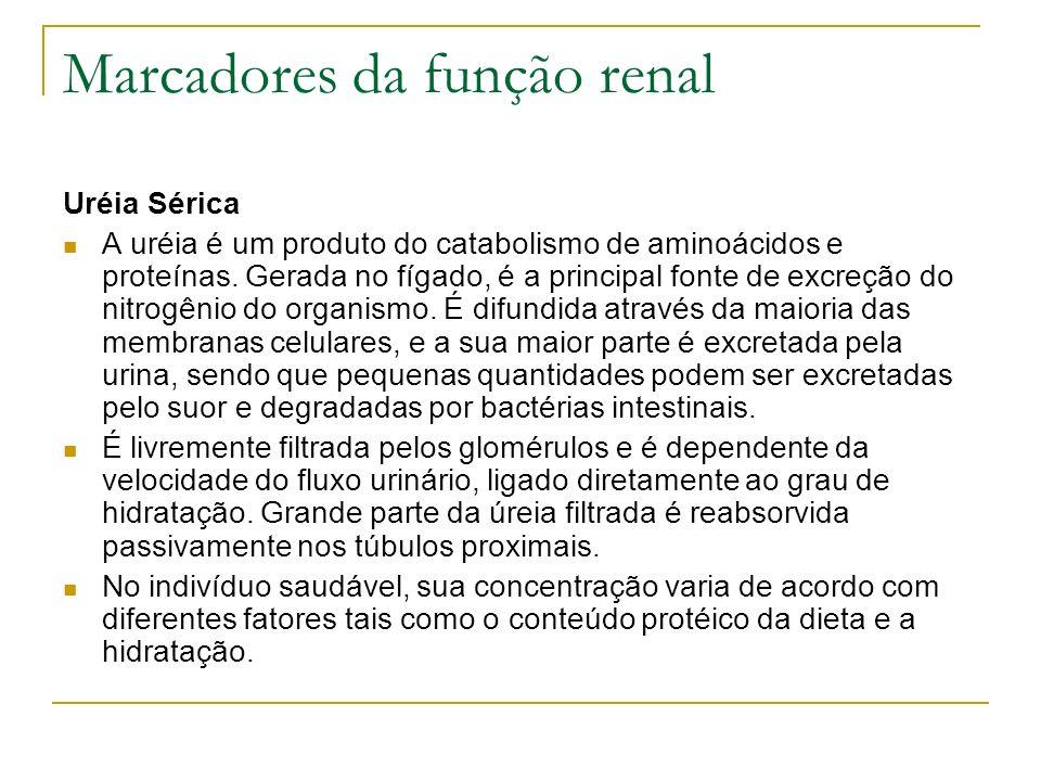 Marcadores da função renal Uréia Sérica A uréia é um produto do catabolismo de aminoácidos e proteínas. Gerada no fígado, é a principal fonte de excre